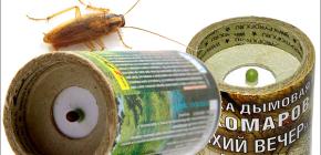 Insecticide rookbommen om kakkerlakken in het appartement te doden