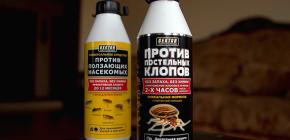 Insecticidale Hector van bedwantsen en andere insecten