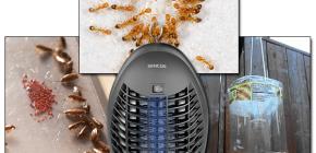 Beoordeling van effectieve vallen voor vliegende en kruipende insecten
