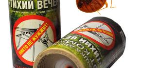 Het gebruik van insecticide rookbommen voor de vernietiging van insecten in de kamer