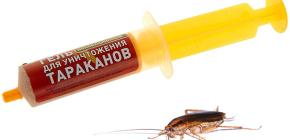 Remedies voor kakkerlakken in de spuit (gels): een overzicht van medicijnen en de nuances van hun gebruik
